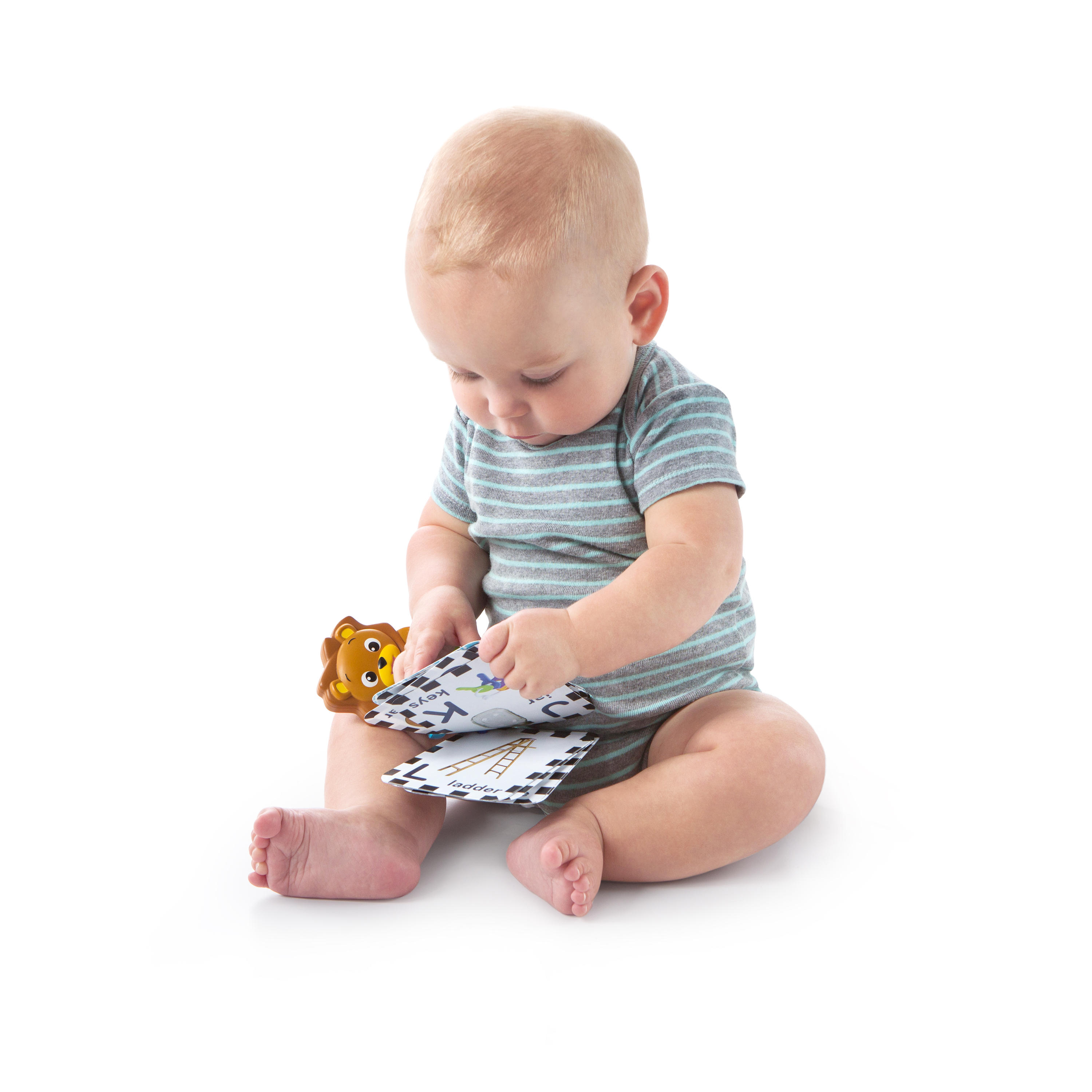 Take Along Discovery Cards™ Toy