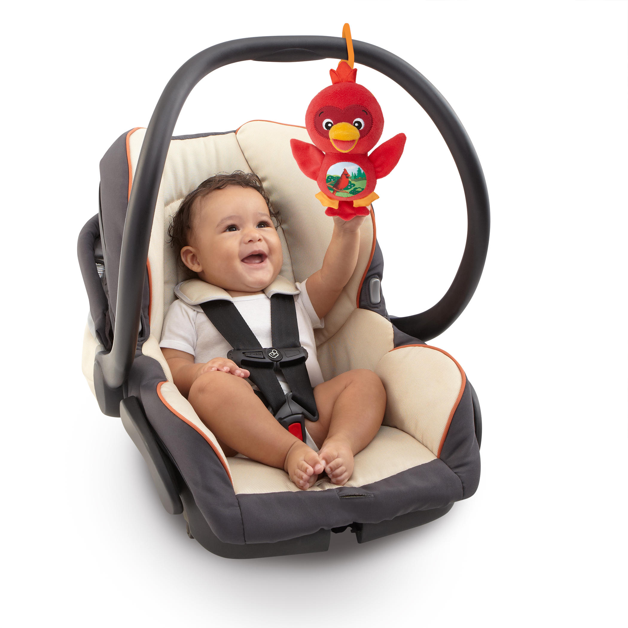 Sing & Play Songbirds™ Take-Along Toys